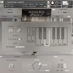 MNDN e-instruments Session Keys Grand S 02 Keys