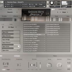 MNDN e-instruments Session Keys Grand S 04 Animator