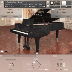 MNDN e-instruments Session Keys Grand Y 01 Piano