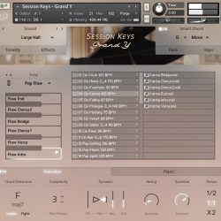 MNDN e-instruments Session Keys Grand Y 04 Animator