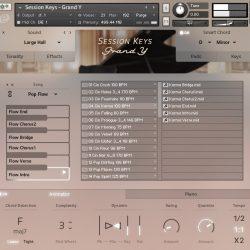 MNDN e-instruments Session Keys Grand Y 04 Animator